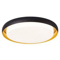 HuiZuo Pisces Smart Ceiling Light