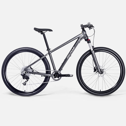 Qicycle XC650 Mountain Bike Gray